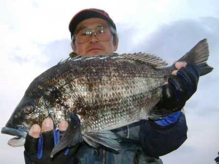 2月4日 磯からフカセ釣り 増田さん 50,9㎝を頭に5匹