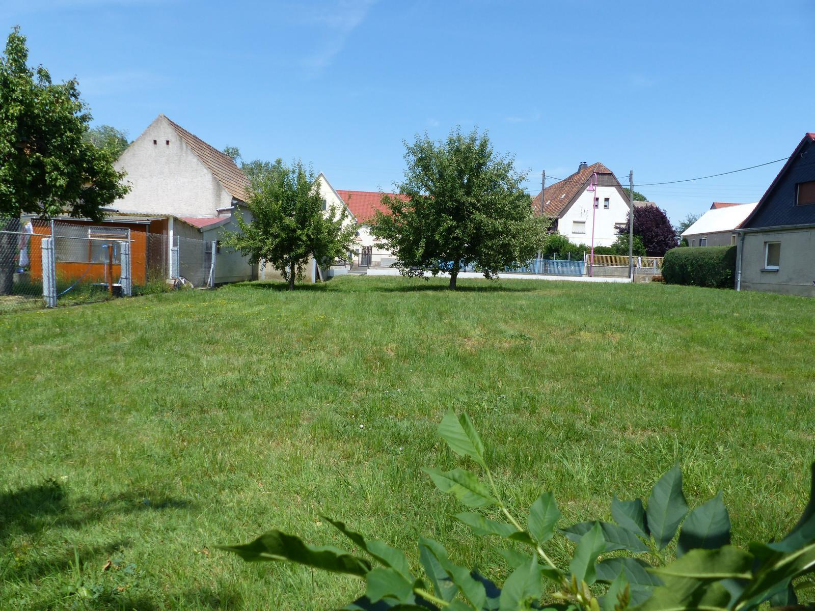 Grundstück mit Blick zur Straße