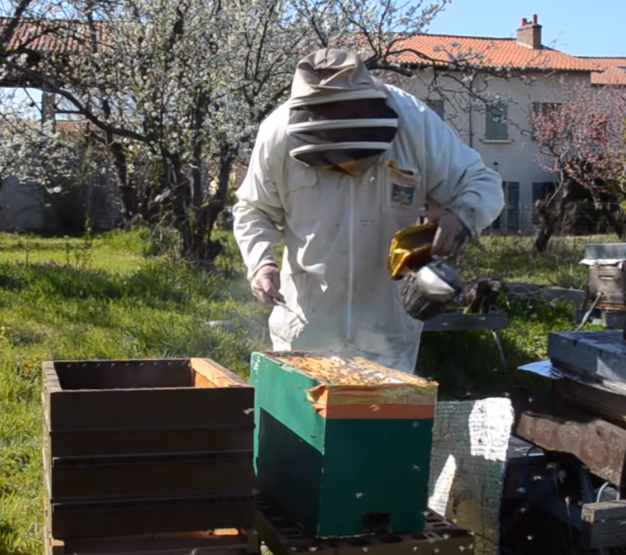 Transfert d'une ruchette en ruche