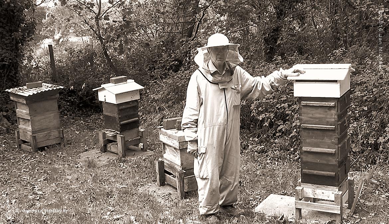 Quel apiculteur êtes-vous ?