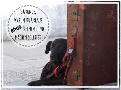 Urlaub ohne Hund