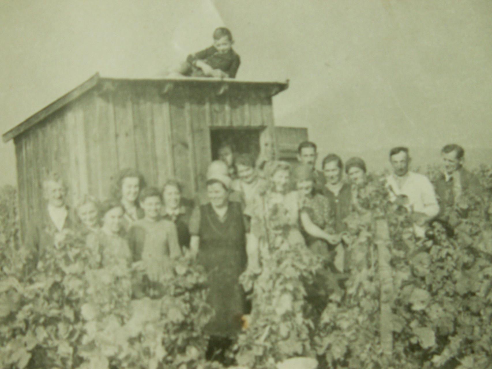 Unsere Hütte im Weingarten war für lange Jahre ein Unterstand für alle Arbeiter.