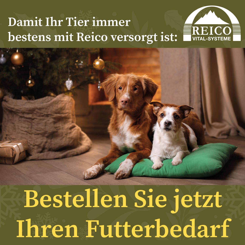 Reico Weihnachtsangebote! Ab sofort sind die Pforten unserer Reico Weihnachtswelt wieder geöffnet! Hier finden Sie schöne Geschenke für Ihren Hund, Ihre Katze oder Ihre liebsten Menschen.