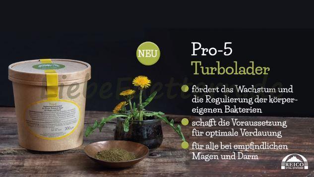 Reico`s Kräutermischung Pro-5 ist eine Mischung aus fermentierten Kräutern, probiotischen Kulturen, Ballaststoffen und Darmflora-Stabilisatoren, die zur Unterstützung einer normalen Magen-Darm-Funktion gefüttert wird.