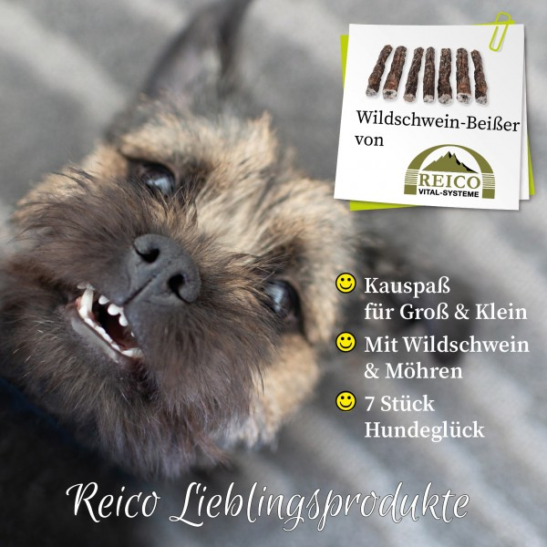 Wildschwein-Beißer der Kauspass für große und kleine Hunde. Mit Wildschwein und Möhren.