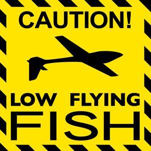panneau jaune avec un planeur Voltij Aeromod et le texte Low Flying Fish