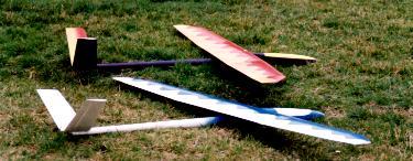 deux planeurs Aldij Aeromod posés dans l'herbe en 1998