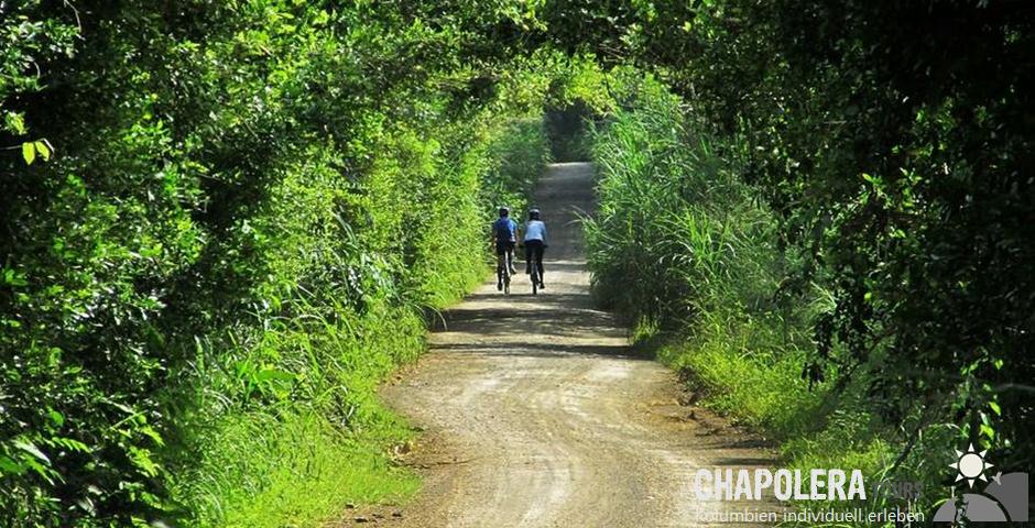 Biketour/ Fahrradtour und Fahrt mit der Brujita in der Kaffeezone