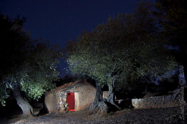 Caseta per eines i estris per treballar el camp en una finca a La Senia