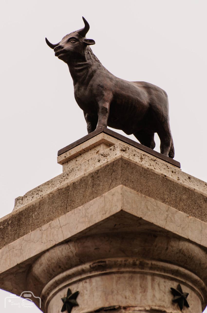 El bou i l' estel, emblemes de la ciutat de Teruel