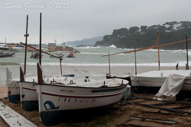 Platje de Llafranc, amb les seves barques a recer