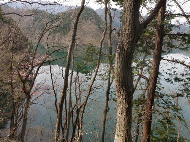 ミツバツツジ・湖・水面に映る山