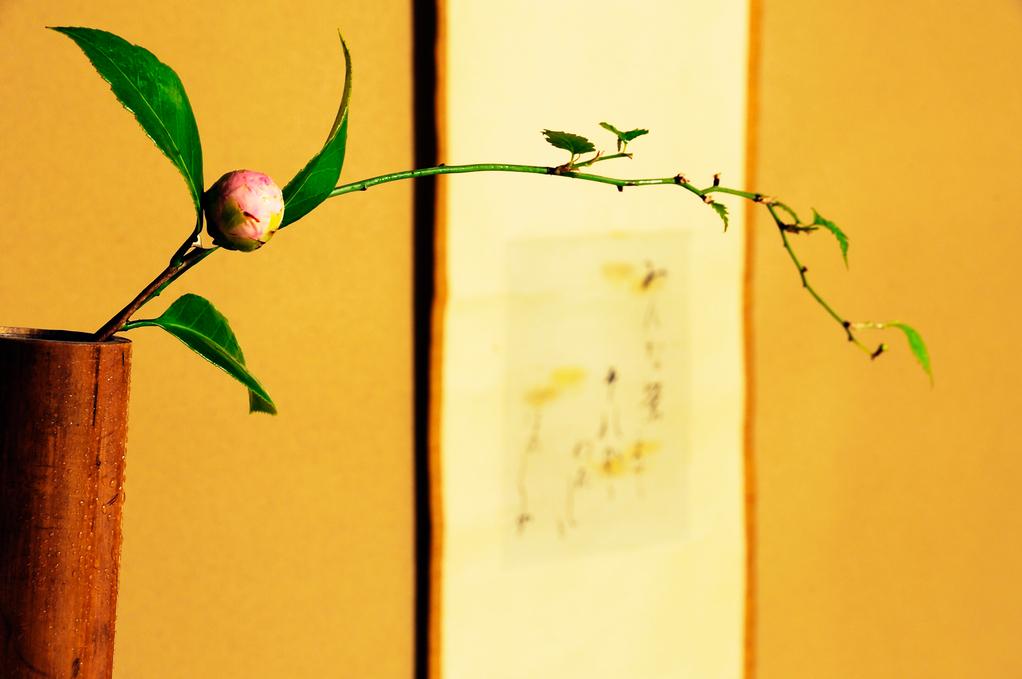弥栄子先生作 竹尺八花入に椿