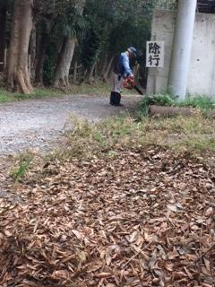 ブローワーで枯葉を吹き飛ばして、清掃しています