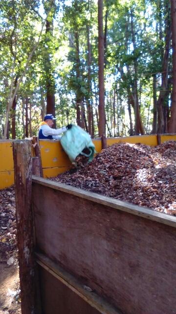 落ち葉の集積場にたまった落ち葉の山