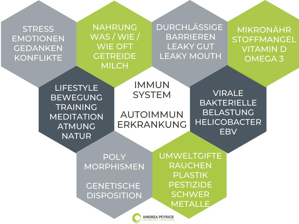Autoimmunerkrankungen aus Sicht der Psycho-Neuro-Immunologie (kPNI)