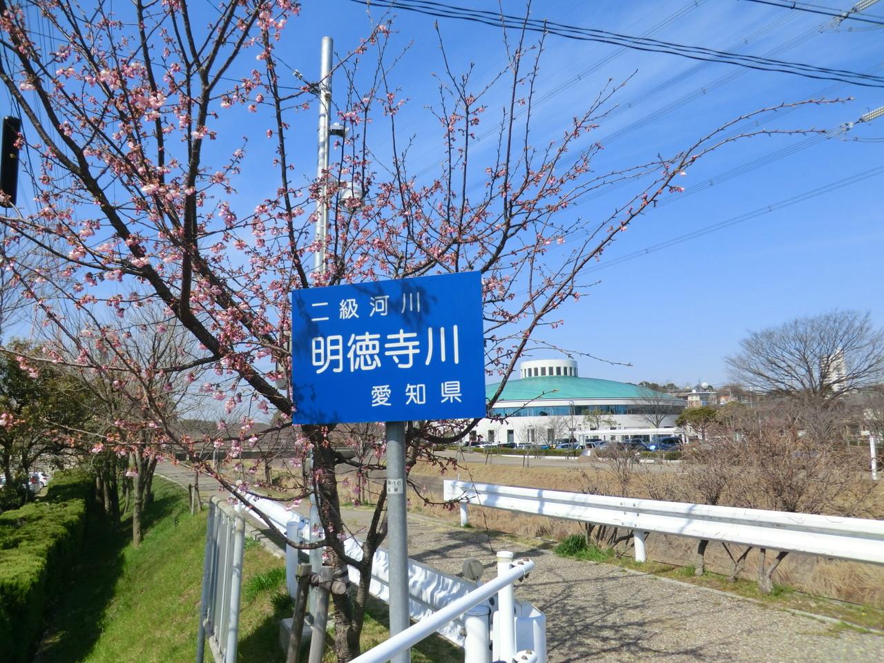 明徳寺川(於大のみち)