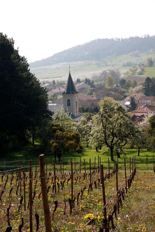 Vieville depuis les vignes