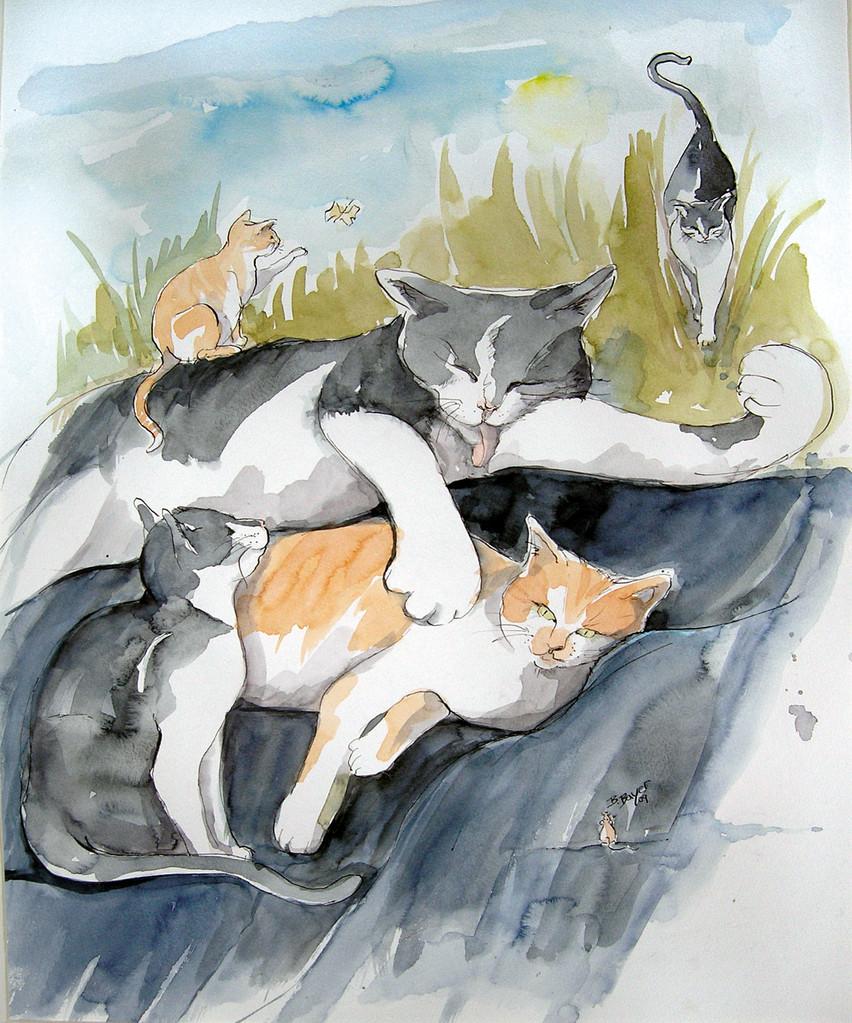 So ein Katzenleben...