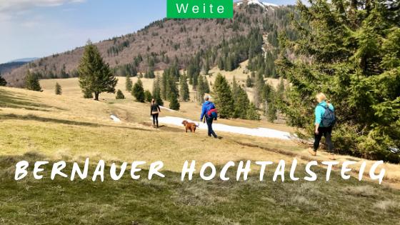 Bernauer Hochtalsteig Schwarzwaldwanderung