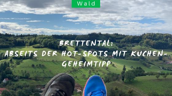 Wanderung im Schwarzwald im Brettental bei Freiamt