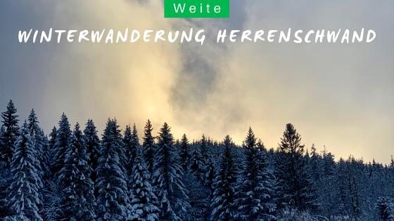Winterwanderung in Herrenschwand