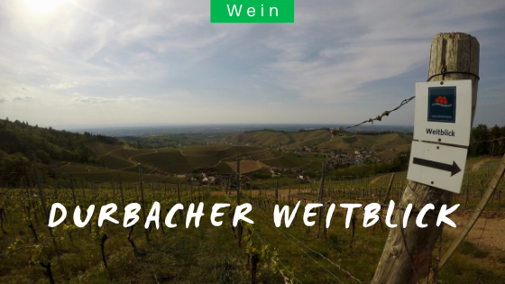 Schwarzwälder Genießerpfad Durbacher Weitblick Wanderung