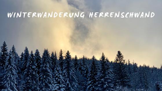 Winterwanderung im Schwarzwald bei Herrenschwand