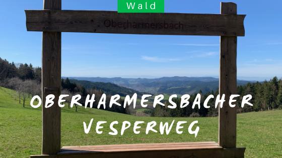 Schwarzwaldwanderung Oberharmersbacher Vespere